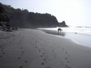 Playa del Ancón
