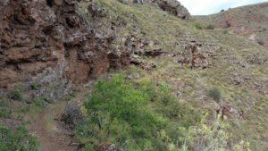 SL-2 Cueva Bermeja (Barranco Guayadeque) - Temisas