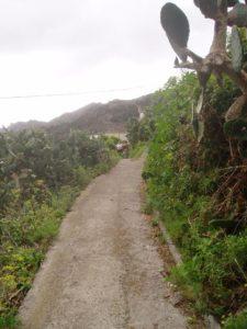 Inicio - Lomo Las Bodegas hacia Barranco de Anosma