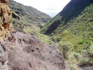 Barranco de Anosma - Cauce