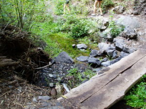 Barranco del Infierno - Puente de madera