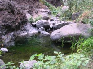 Charcos en Barranco de Masca
