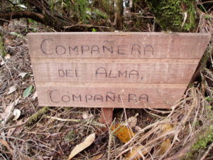 Cartel madera - Mirador Chinobre