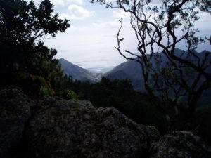 Paisaje en ruta del Pijaral