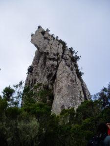 Roque Anambro