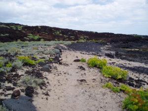 Playa Las Arenitas en Malpais de Güimar
