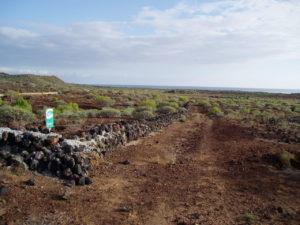 Malpaís de la Rasca (muro piedra)