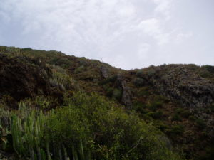 Sendero Antequera (por Casillas)