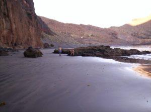 Playa Zápata hacia Antequera con marea baja