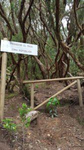 Prohibición de subida al Mirador de Chinobre